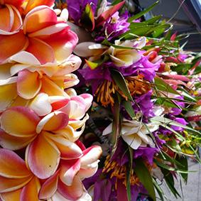 cooks flowers