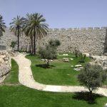 israel-080504-010